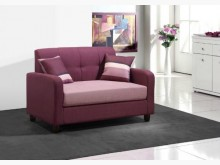 [全新] 喬治紫色雙人布沙發椅 桃園區免運雙人沙發全新
