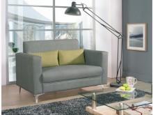 [全新] 蘇納二人貓抓皮沙發雙人沙發全新