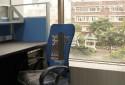 辦公室窗外就有綠景