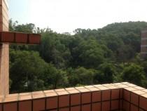 嶄新26坪3房2廳2衛2陽台,綠樹圍繞