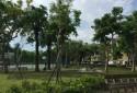 美崙公園-周遭環境圖