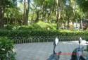 附近有公園