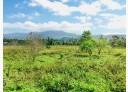 鹿野鄉-瑞和村土地,2225坪