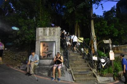 象山登山步道因捷運開通,可眺望大臺北,受大家歡迎。
