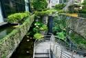 大樓附設綠化水池