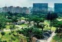 大廳面榮星公園景觀