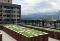 頂樓城市菜園