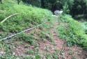 每一畝田均有灌溉噴頭,灌溉方便