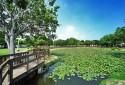 竹南運動公園