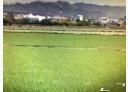 霧峰區-北豐路土地,580坪